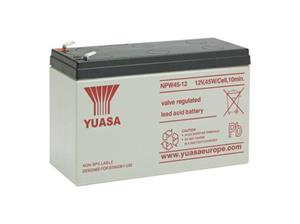 SPECIAL INTRUSION NPW45-12 Battery
